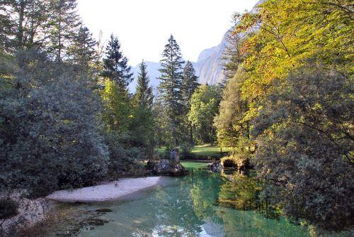 lake nature slovenia