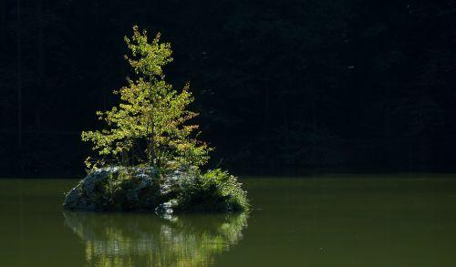 lake tyrol back light