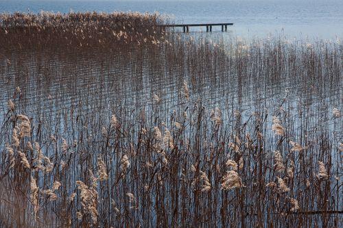 lake bank sky