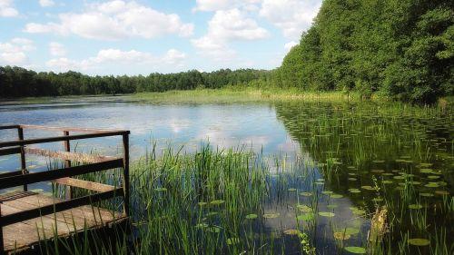 lake water landscape