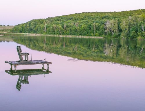 lake forest chair