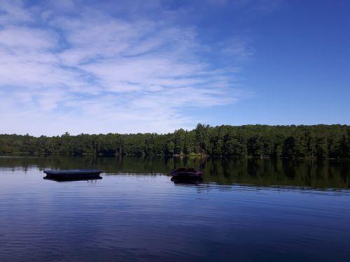 ežeras,vandens žaislai,vanduo su medžiu,vanduo su doku,prieplauka,vanduo,dangus,medžiai