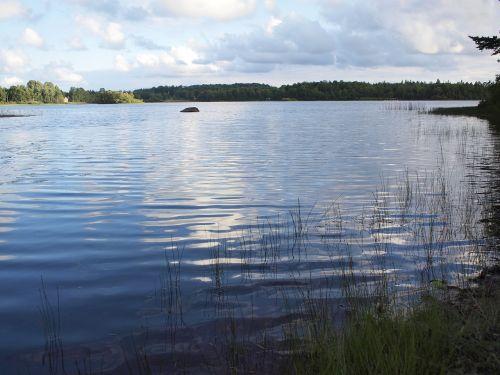 lake fishing summer