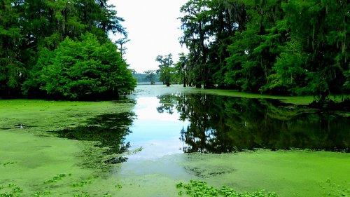 lake  water  reflections