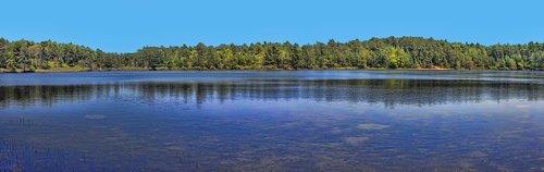 lake  wild  nature