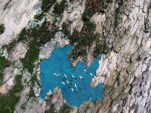 lake  platanus  lake platanus