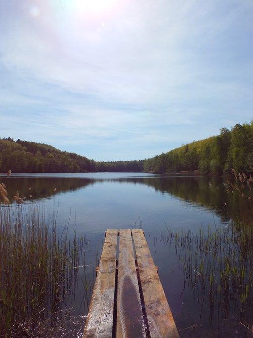 lake  web  nature