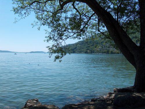 lake bank idyllic