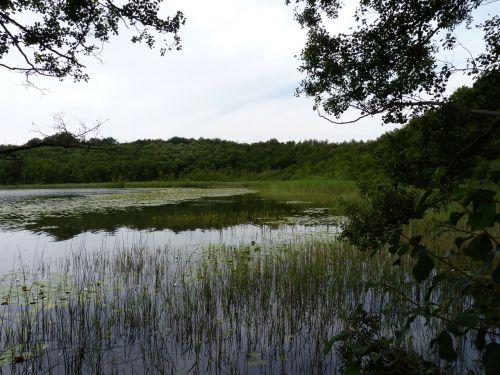 lake mecklenburg western pomerania
