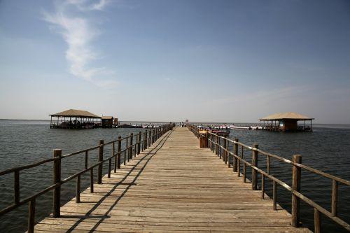 lake island boardwalk