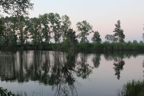 lake reflection summer