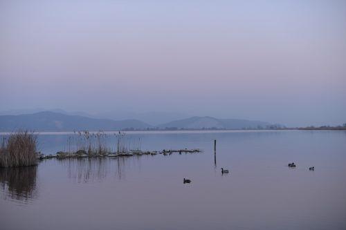 lake viareggio italy