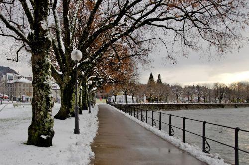 lake constance bregenz winter