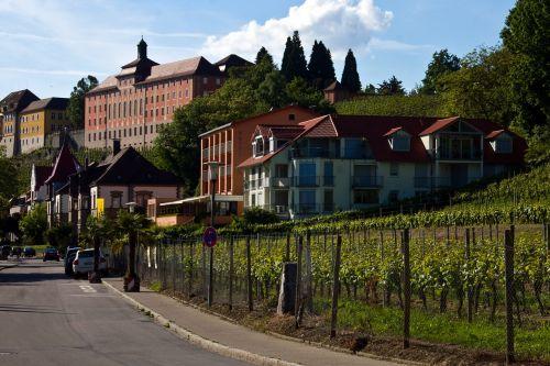 lake constance meersburg state winery