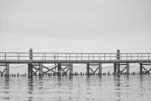 lake constance investors web