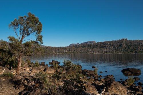 lake st clair  lake  tasmania