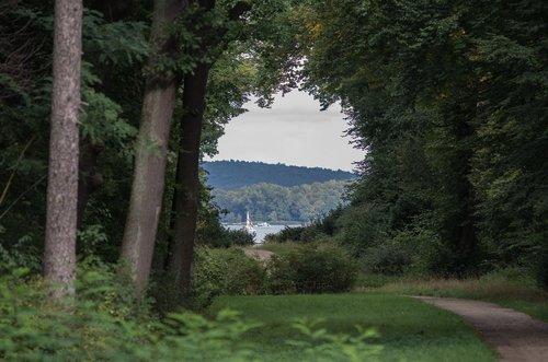 lake view  tiefenschärfe  park