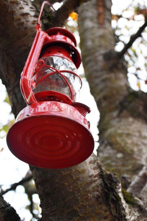 lamp tree red