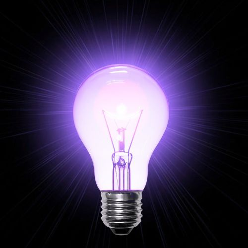 lamp purple light bulb