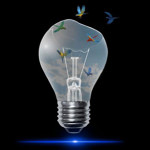 lamp blue light bulb