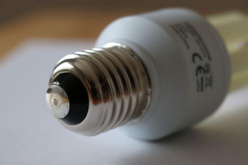 lamp pear light