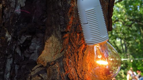 lamp  burn  bright