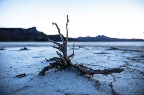 land soil dry