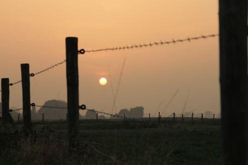 land fence sunset