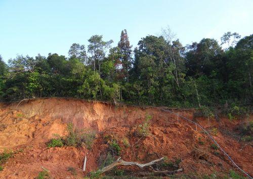 land slip red soil lateritic