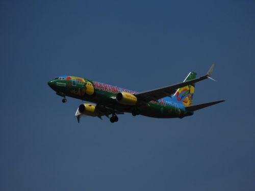 landing aircraft sky
