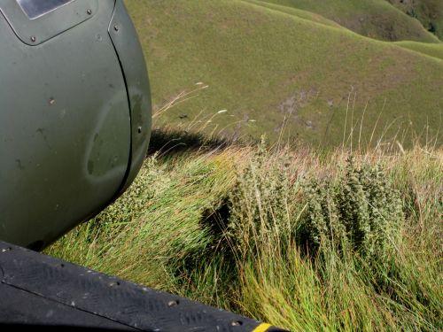 Landing Spot, Drakensberg