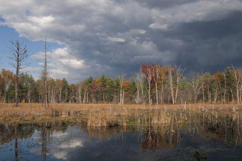 landscape wetland storm