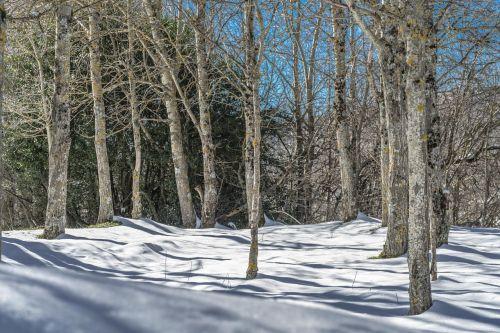 landscape nevado snow