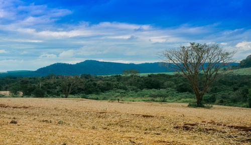 landscape green clouds