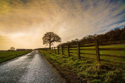 kraštovaizdis, gamta, saulėlydis, medis, sezonai, pavasaris, be & nbsp, lapų, kraštovaizdis