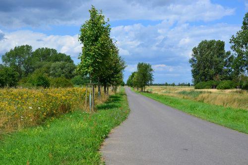 landscape nature trail