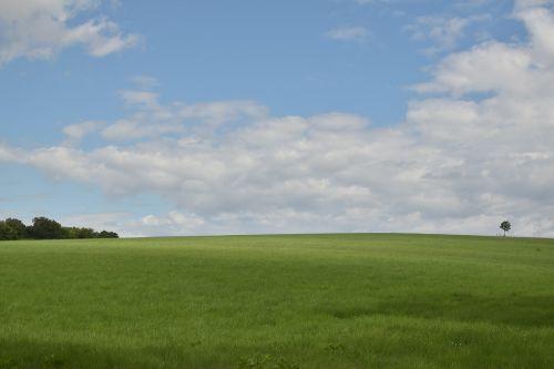 landscape meadow sky