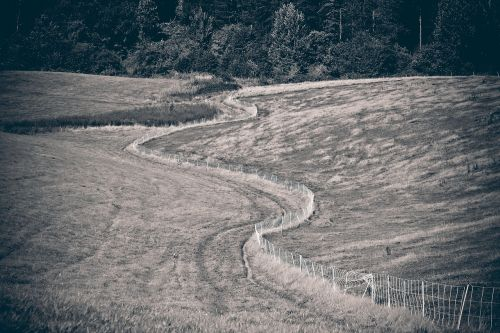landscape,field,nature,fields,arable,meadow,vision,summer,wide,distant,hill,mood,fence,wound,away,path,black white,black and white,trees,black and white photo,black and white sepia