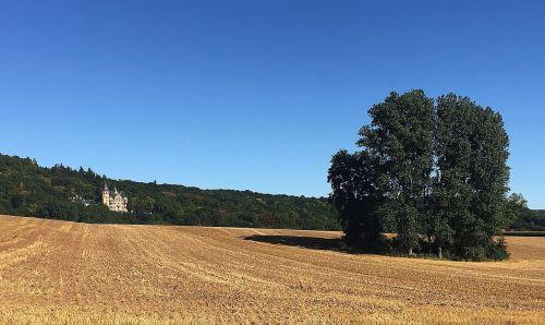 landscape summer arable