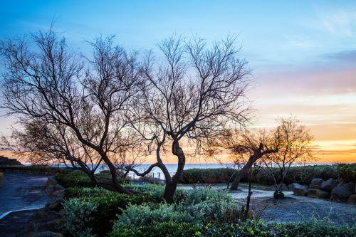 landscape sea morning