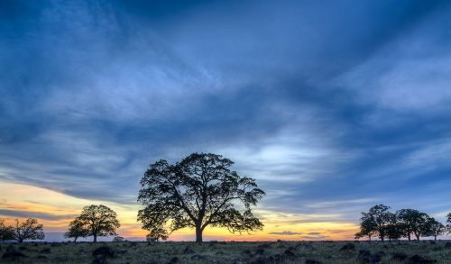 landscape scenic colorful