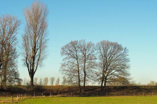 landscape nature mood