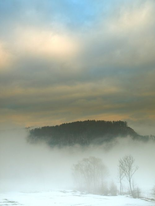 landscape winter the fog