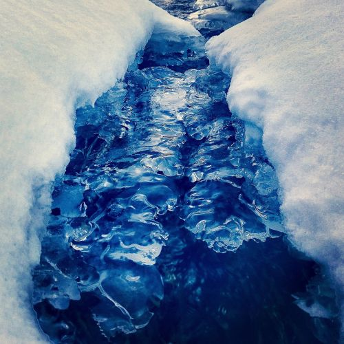 landscape brook running frozen