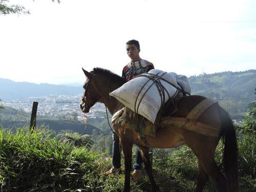 landscape libanotolima colombia