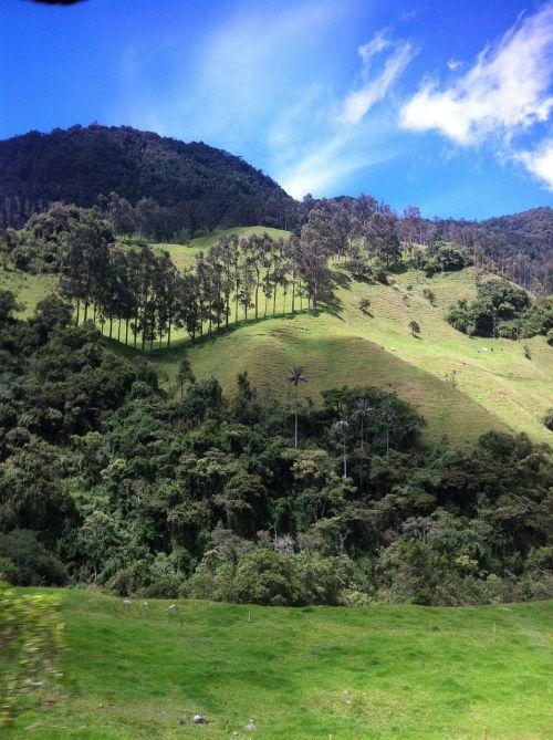 landscape cocora valley travel