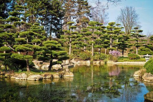 landscape garden japanese garden