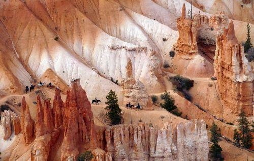 landscape scenic horseback
