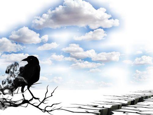 landscape bird sky