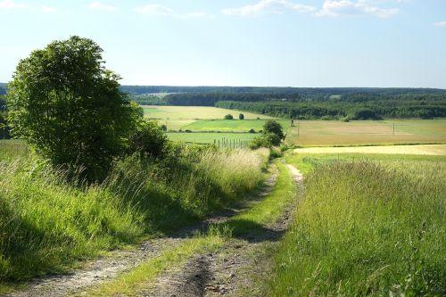 landscape fields agriculture